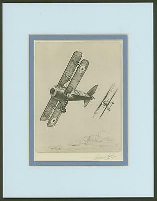 Spad - Vintage Collotype Print by Howard Leigh  Ready To Frame