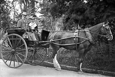 PHOTOGRAPHIC GLASS NEGATIVE CROMER NORFOLK c1895 PONY&TRAP 'THE OLD BOAT MASTER'