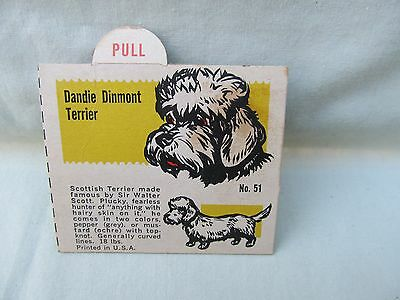 1950's Dandie Dinmont Terrier Trade Card / Premium Back of Box or Insertion /#51