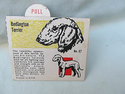 1950's Bedlington TerrierTrade Card / Premium Back of Box or Insertion / No. 67