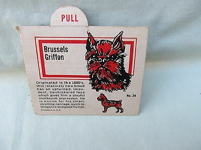 1950's Brussels Griffon Trade Card / Premium Back of Box or Insertion / No. 34
