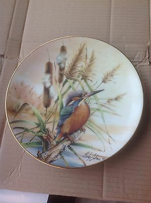 Colourful Birds Of Britian's Heritage - Kingfisher -  The Hamilton Collection