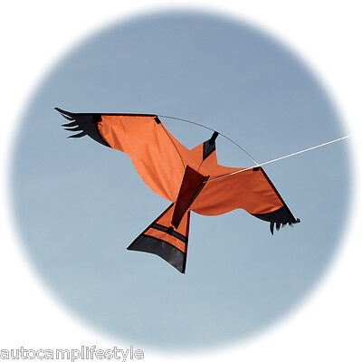 Hawk Kite.Bird Scarer .Farm crop  also allotment protector. With Free Line Rig.