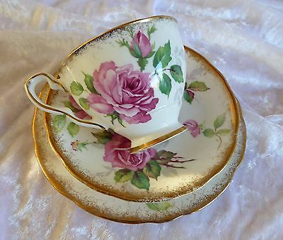 Royal Stafford Berkeley Rose Teacup Saucer and Plate