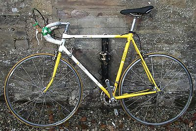 Vintage Raleigh Dynatech 500 Racing Bike Restoration Project Reynolds Campagnolo
