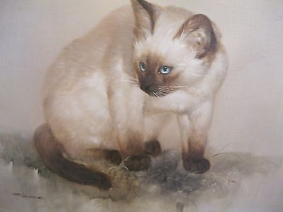 oil on canvas cat picture signed /framed