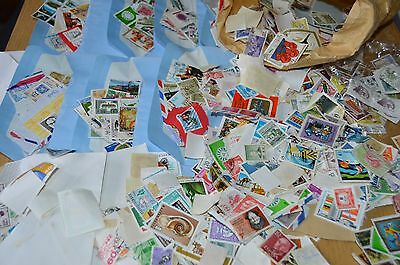 Job Lot Collection Postage Stamps Over 1000 256G In Weight Worldwide