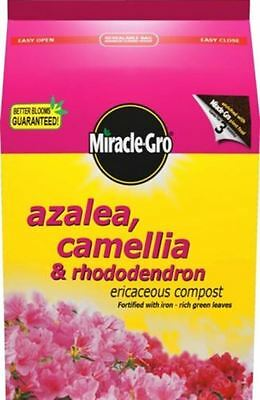 Miracle Gro Azalea Camelia Rhodedendrum Ericaceous Compost Soil Flower Feed 8L