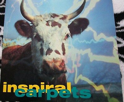 """Inspiral Carpets-She comes in the fall-unplayed 7""""!"""