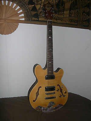 Stunning All Solid Wood Carved Semi-Hollow  Electric-Acoustic Guitar