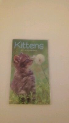 2017-2018 2 Year Planner With Kittens