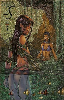 Witchblade # 25 Chromium Gold Speckle Aspen Fathom Waterfall Cover