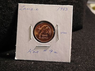 ZAMBIA:   1983      1 NGWEE    COIN     (UNC.)    (#3900)  KM # 9a