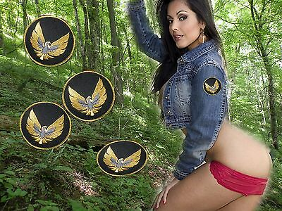 PONTIAC    TRANS AM firebird patch door logo  4 patch lot