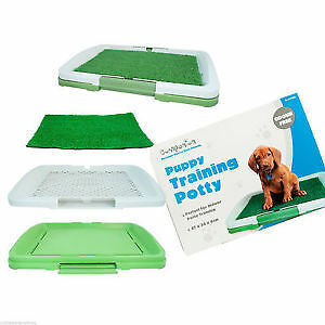 New Pet Puppy Dog Toilet Trainer Absorbent Mat Potty Patch Pad House Litter Tray