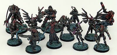 Infinity - Combined Army - Pro Painted - 12 models