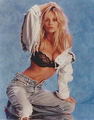 Pamela Anderson Baywatch  8 X 10 Photo With Ultra Pro Toploader