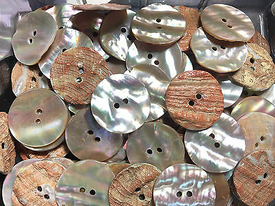RARE LOT! 12 pcs AUSTRALIAN ABALONE SHELL NATURAL SHADE BUTTONS 28MM 2hole