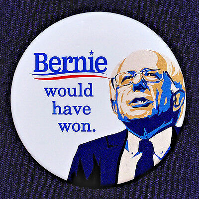 Bernie Sanders for President 2016 Button Pin Hillary Bernie Would Have Won