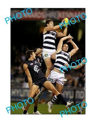 Tom Hawkins Geelong Fc Champion Large A3 'specky' Photo