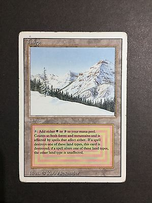 Taiga Mtg Revised In English Front Good, Back Played