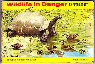 Brooke Bond Wildlife in Danger (1963) Full Album