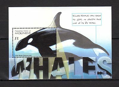 Micronesia Whales MNH -y12