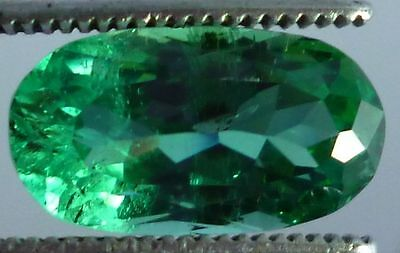Wow hu1d0 cts Green Kunzite oval cut Piece for Ring A++ with $5 shipping