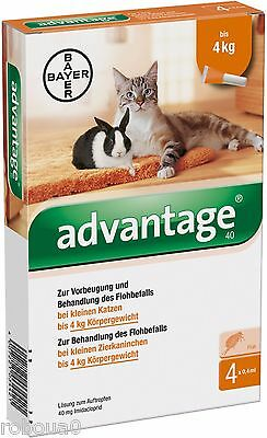 6 Pack ADVANTAGE for cats or rabbits less than 9 pounds ( 4kg)