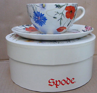 Spode Flower Of The Month Cup & Saucer - August