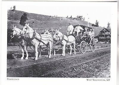 "*Postcard-""Stagecoach"" /Monida/Yellowstone Stage Line/ *W Yellowstone, MT (#273)"