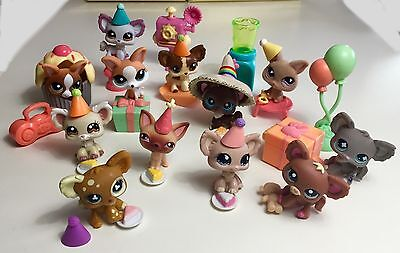 ✨Littlest Pet Shop Lot✨ Chihuahua Birthday Party ✨12 Chihuahuas & Accessories