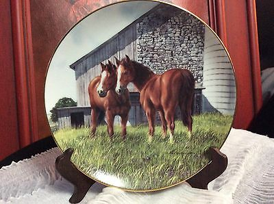 """Donald W. Patterson Danbury Mint 8-1/4"""" Horse Plate The Yearling"""