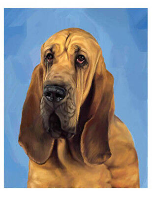 artav Bloodhound 01 Art Print of Watercolor Paint