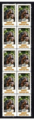 Bernese Mountain Dog Strip Of 10 Mint Stamps #3