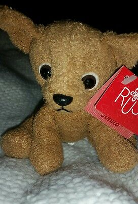 Russ Dog Plush Named Junito With Tags