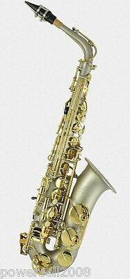 Professional Performance E Flat Gold Musical Instrument Saxophone