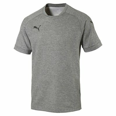 Puma Fußball Ascension Casuals Tee Herren T-Shirt grau