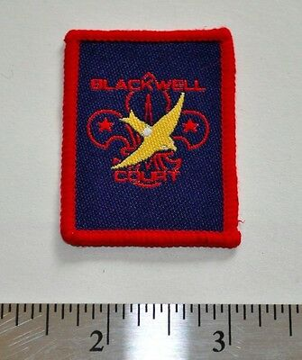 Blackwell Court, England, UK, Boy Scouts Badge Patch