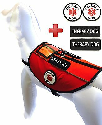 ALL ACCESS CANINE™ THERAPY DOG Vest CUSTOM Reflective Harness Vest Velcro Badges