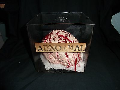 Frankenstein's Abnormal Brain In Jar Film Prop Replica