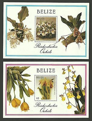 Belize 1987 Flowers Orchids Botanic Illustrations Christmas Set Of 2 Sheets Mnh