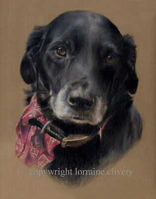 PET PORTRAITS IN PASTEL FROM YOUR OWN  PHOTOGRAPHS Ideal Gift