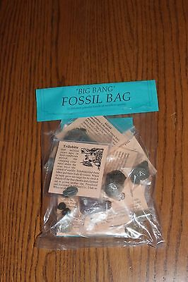 Fossil Collectors Specimen Bag ( Great For Kids) Free Shipping)