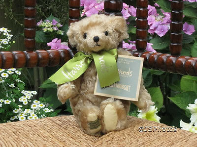 Harrods Merrythought Mohair Bear Limited Edition