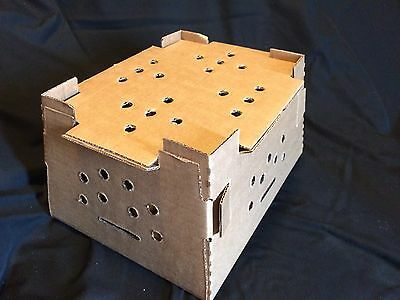 Chick Shipping Box w/ Excelsior Pads 10 Pack Holds 25-75 Day Old Chicks