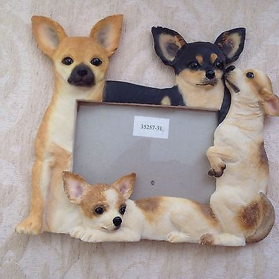 """Chihuaha Picture Frame - 4 Chihuahua's on border 4"""" x 6"""" EUC"""
