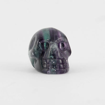 Fluorite Crystal Skull Carving (Small) - High Quality Gemstone Statue