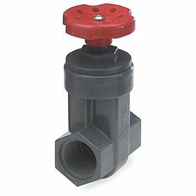 King Brothers Inc.GVG-1250-T1-1/4-Inch Threaded PVC Schedule 80 Gate Valve, Gray