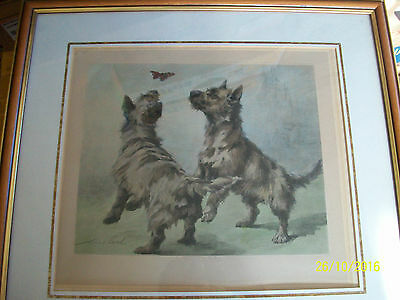 Cairn Terriers by Maud Earl.c 1913. Hand Coloured Original Framed  Print